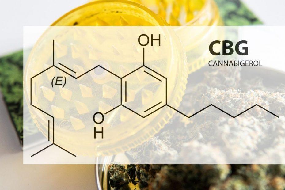 CBG ou Cannabigerol